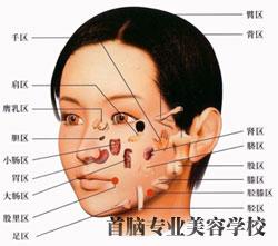 面部穴位指压法