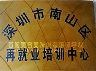 深圳市南山区再就业培训中心