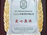 2008年深圳市南山区爱心集体