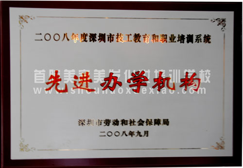 2008年先进办学机构