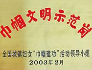2003年巾帼文明示范岗